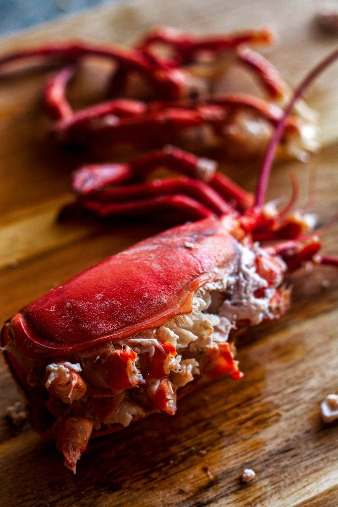 Cooking a whole lobster is easier than you would think! This guide will teach you how to humanely kill a lobster, boil or steam them, shell them, and get every piece of meat from claw to tail.