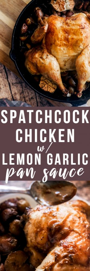 This cast iron spatchcock chicken is my favorite weeknight chicken staple! The meat is juicy, the skin is crispy and golden, and the lemon garlic pan sauce is perfect.